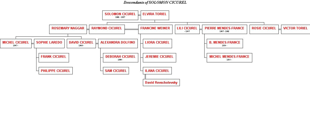 SOLMON CICUREL FAMILY TREE